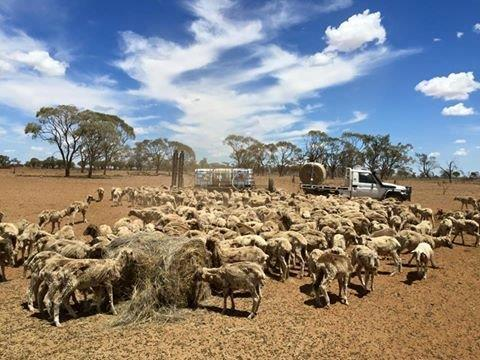 Longreach QLD AUssie Helpers helping farmers in hardship